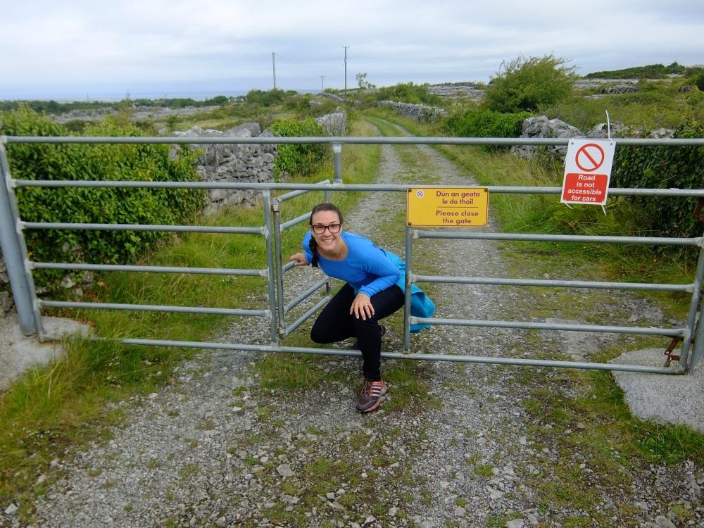 Walking through an Irish Fence
